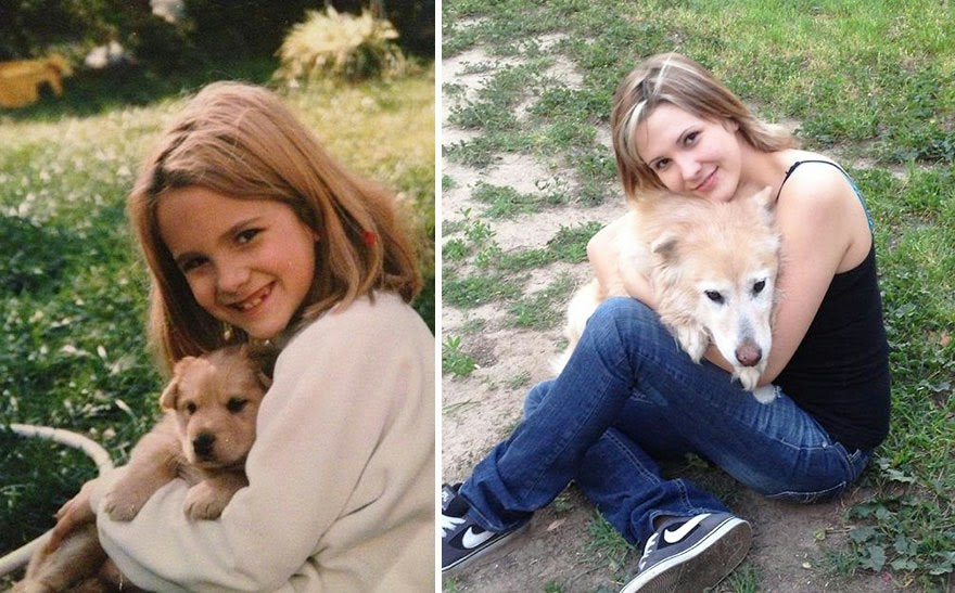 dogs-before-and-after (17)