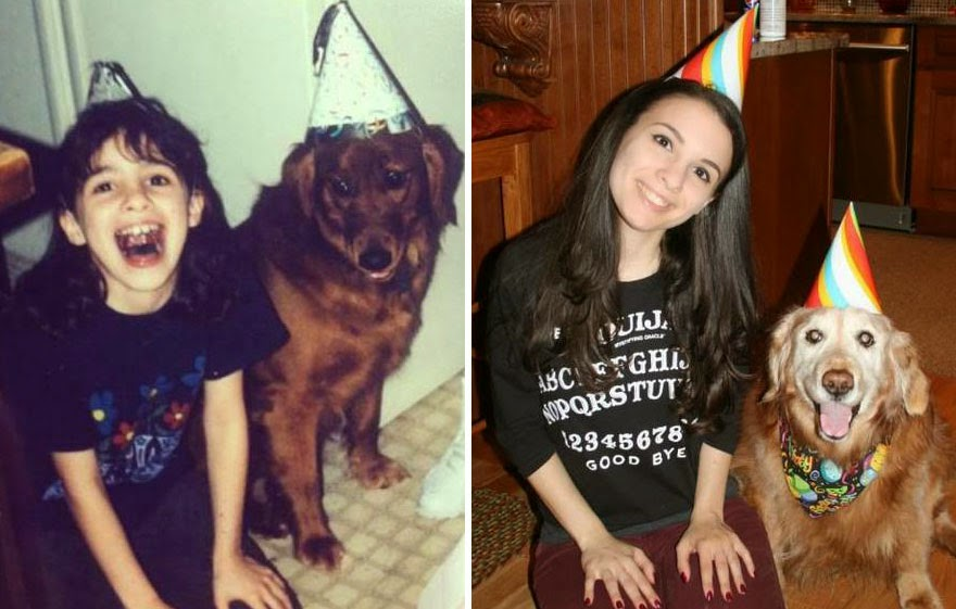 dogs-before-and-after (18)